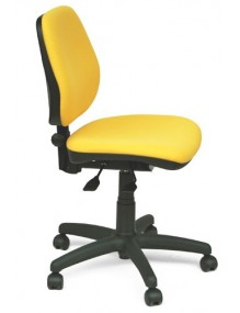 Swivel chair (SS5)